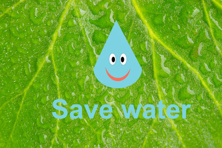 Save water, save earth and go green, environment protection concept Stock Photo
