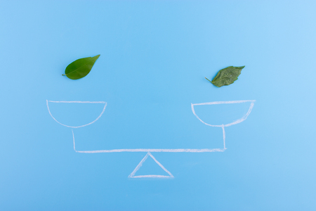 money and leaf on the scales. green responsible business concept