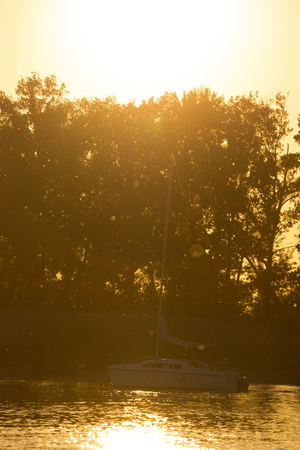 Lone boat sailing into the sunset gold sunlight. trees