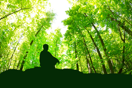 Calm man meditating in yoga pose in green forest 免版税图像