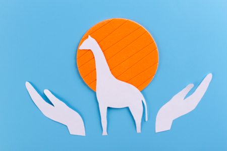 save african animals concept. hands protect animals Imagens