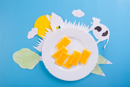 cheese on blue background. dairy products