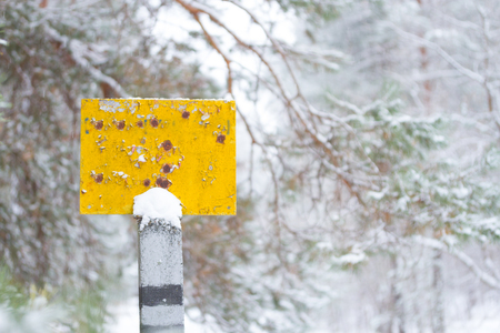 A null old pointer in a forest in winter.