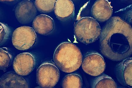 Firewood background image. Stack of round firewoods