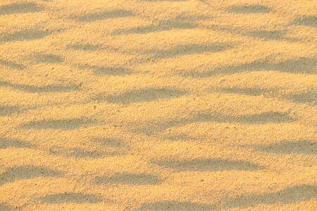 sand pattern in the desert in warm sunlight
