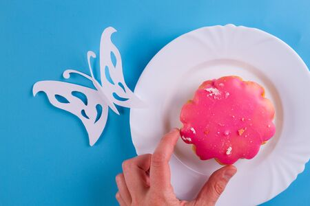 pink cookie on the blue background. butterfly