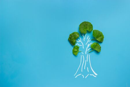tree painted on blue background with natural leaves