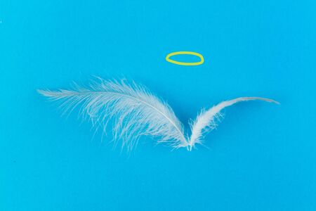 Two feather and nimbus on blue background Stockfoto