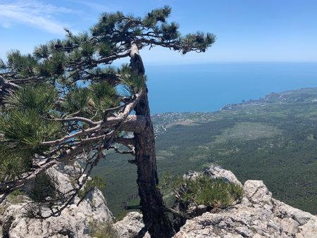 Landscape with mountain peaks and rocks. Sea below Zdjęcie Seryjne