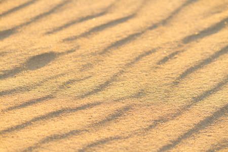 Beach sand background. Close up