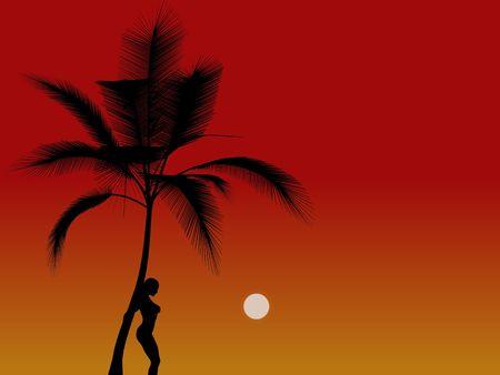 siloette: Silouette girl on sunset