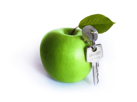 Green fruit on a white background with leaf and keys