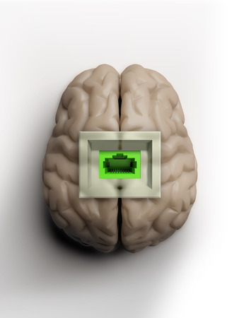 human brain isolated with socket for connecting