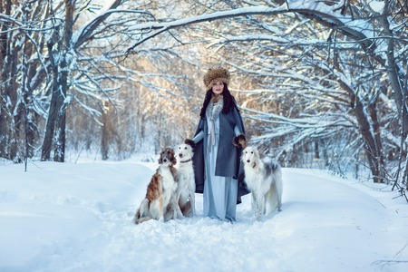 greyhound: A girl with greyhounds on the snow