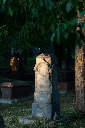 Monument on the grave in the park. Evening lighting