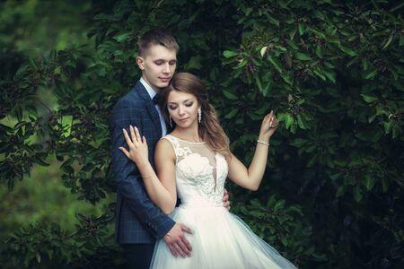 Wedding walk. Newlyweds near the green tree