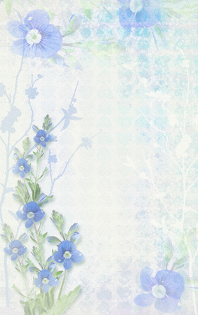 delicate: Tender light background composition with delicate blue flower.