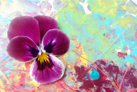 Purple heartsease on a picturesque background with spray paint. Stock Photo