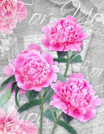 happening: Postcard flower. Congratulations card with beautiful peonies on a grunge background and text for you. Can be used as gift, greeting card, invitation for wedding, birthday, other holiday happening. Stock Photo