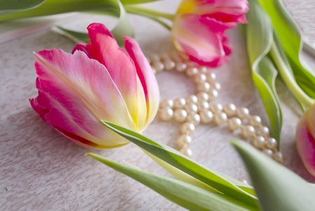 perls: Beautiful composition with three red tulips and pearl necklace, composed in the form of eight on grunge background. 8th of March theme. Stock Photo