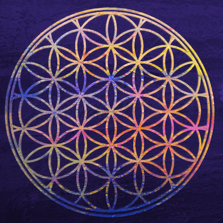 Flower of life. Sacred geometry. Lotus flower. Mandala ornament. Esoteric or spiritual symbol. Buddhism chakra. Geomtrical figure, composed of overlapping circles. Decorative motif since ancient times