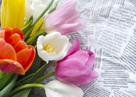 table scraps: Beautiful blossoming colorful tulip flowers on collages of text snippets. Floral design. Nature background. Spring background with beautiful fresh flowers.