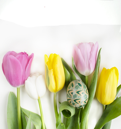 Beautiful blossoming tulip flower and Easter colorful egg. Floral design. Nature background. Spring background with beautiful fresh flowers. Happy Easter. Still life with Pysanka. Easter background.