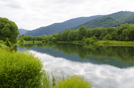 Summer Carpathian landscape with Skole lake and forest trees on the background of mountains. Nature reserve. Natural background. Ukraine.