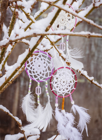 Dream catcher hanging from a tree. Ethnic design, boho style, l.
