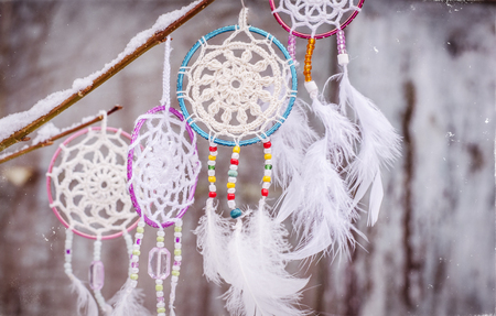 Dream catcher hanging from a tree. Ethnic design, boho style, l. Banco de Imagens - 95467234