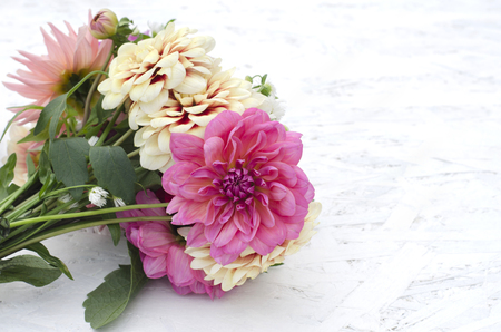 A bouquet of dahlias with a place for the text. Congratulations on your birthday, mothers day, 写真素材