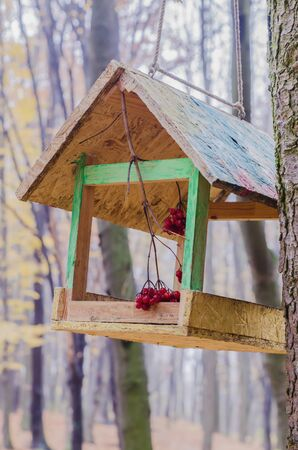 A wooden feeder on the background of a blurred forest. A seasonal photo. Stok Fotoğraf
