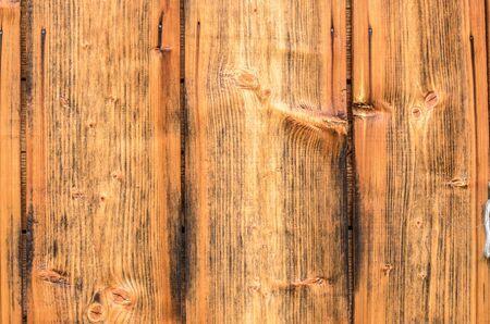 Tree bark texture on firewood. Wood bark background.