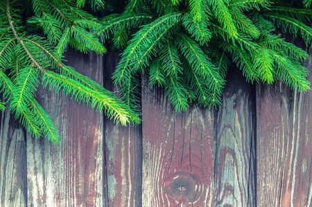 Tree branches on wooden background. Photo with space for photo for Christmas greetings. Stok Fotoğraf