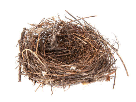 Bird wooden nest isolated on the white background