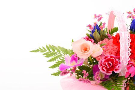 Prachtige bloemen Stockfoto