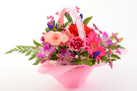 sch�ne blumen: Beautiful flowers