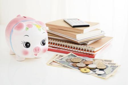 Sparschwein mit Geld Standard-Bild - 85407063