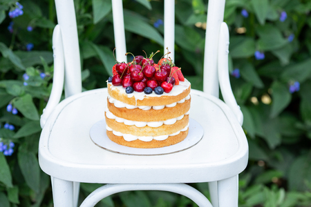 Homemade summer biscuit cake with cream and fresh berries In the garden Soft focus