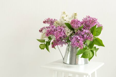 Bouquet of lilac in tin jug on white background. With space for your text - Image