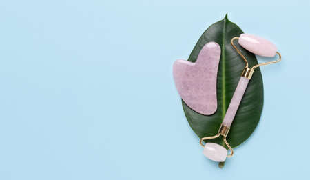 Gua Sha massager, face roller and ficus leaf on blue background. Massage tool for facial skin care, SPA beauty treatment concept - Image Archivio Fotografico