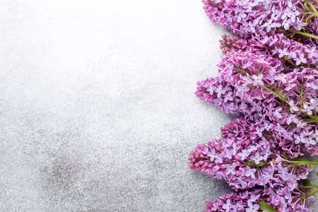 Purple lilacs on stone background. Mockup. Top view. Copy space for your text - Image 版權商用圖片