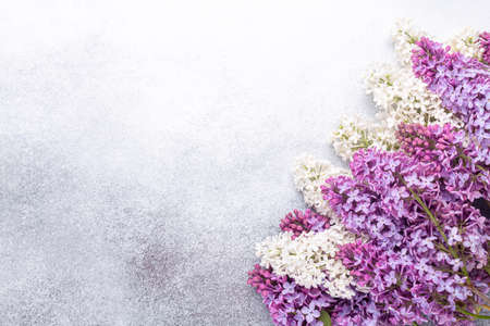Purple and white lilacs on stone background. Mockup. Top view. Copy space for your text - Image