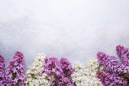 Branches of purple lilac on stone background. Romantic spring mood. Top view. Copy for your text - Image 版權商用圖片