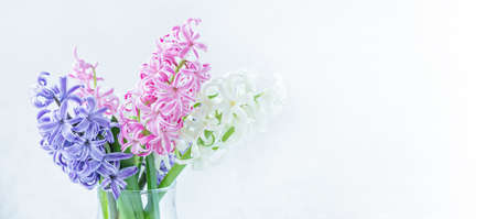 Spring floral background. Purple, pink, white hyacinth flowers bouquet on shelf in front of stone wall. Copy space - Image