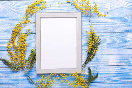 Easter mockup with mimosa flower and wooden frame on blue background - Image 版權商用圖片
