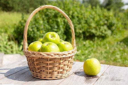 Green apple in wicker basket on wooden table Green grass in the garden Harvest time Organic food 版權商用圖片