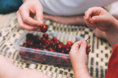 Father's day. Dad and son eating cherries together on the beach. Happy family father and child. Child's hands with a sweet cherries and dad's hands blurred on a background with berry cherries