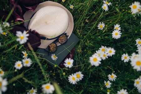 A summer hat, sunglasses, a chamomile flower and a book lie on a bright scarf among a flower field. Concept of summer holidays or preparing for studies