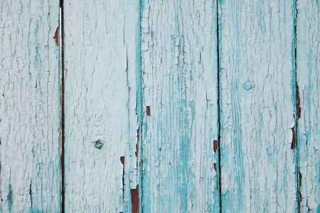 Texture of old blue paint on a wooden fence. Background for your design.